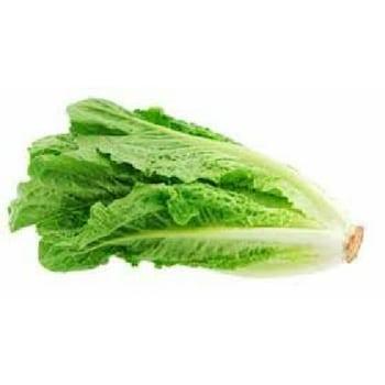 12-vegetales-que-cultivar-en-diciembre-lechuga