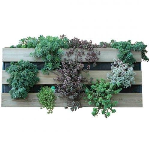 huerto-mesas-cultivo-jardin-vertical-gardeneas-01