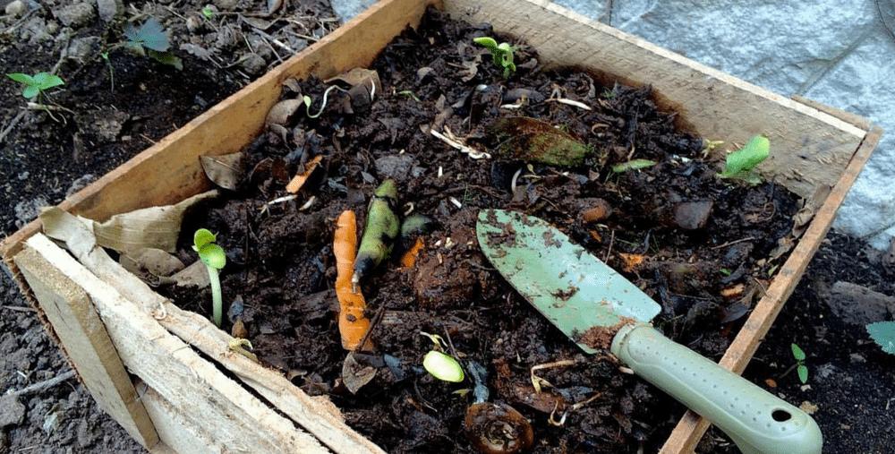 como-hacer-compost-gardeneas-compostaje